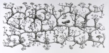 Richard Giblett [2008] Mycelium Rhizome. Graphite on paper, 120 x 240 cm.
